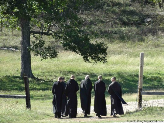 Keep an eye out for the monks, on one of their daily strolls.